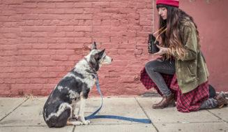 14 φωτογραφίες που μόνο όσοι έχουν σκύλο θα καταλάβουν